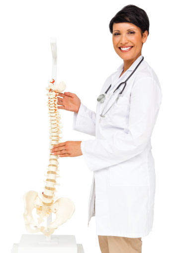 about-us-spine-taller